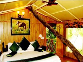 Tree House Jaipur