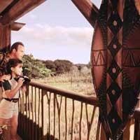 Exterior view   Disney Animal Kingdom Lodge -