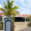 Citrus Hotel Sriperumbudur, Chennai