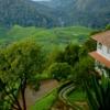 Blackberry Hills Retreat and Spa, Munnar