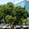 Lords Eco Inn Gandhidham, Gandhidham