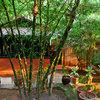 Soochipara Resort, Wayanad