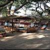 Sun N Shade Hotel, Matheran