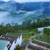 Fragrant Nature Munnar, Munnar